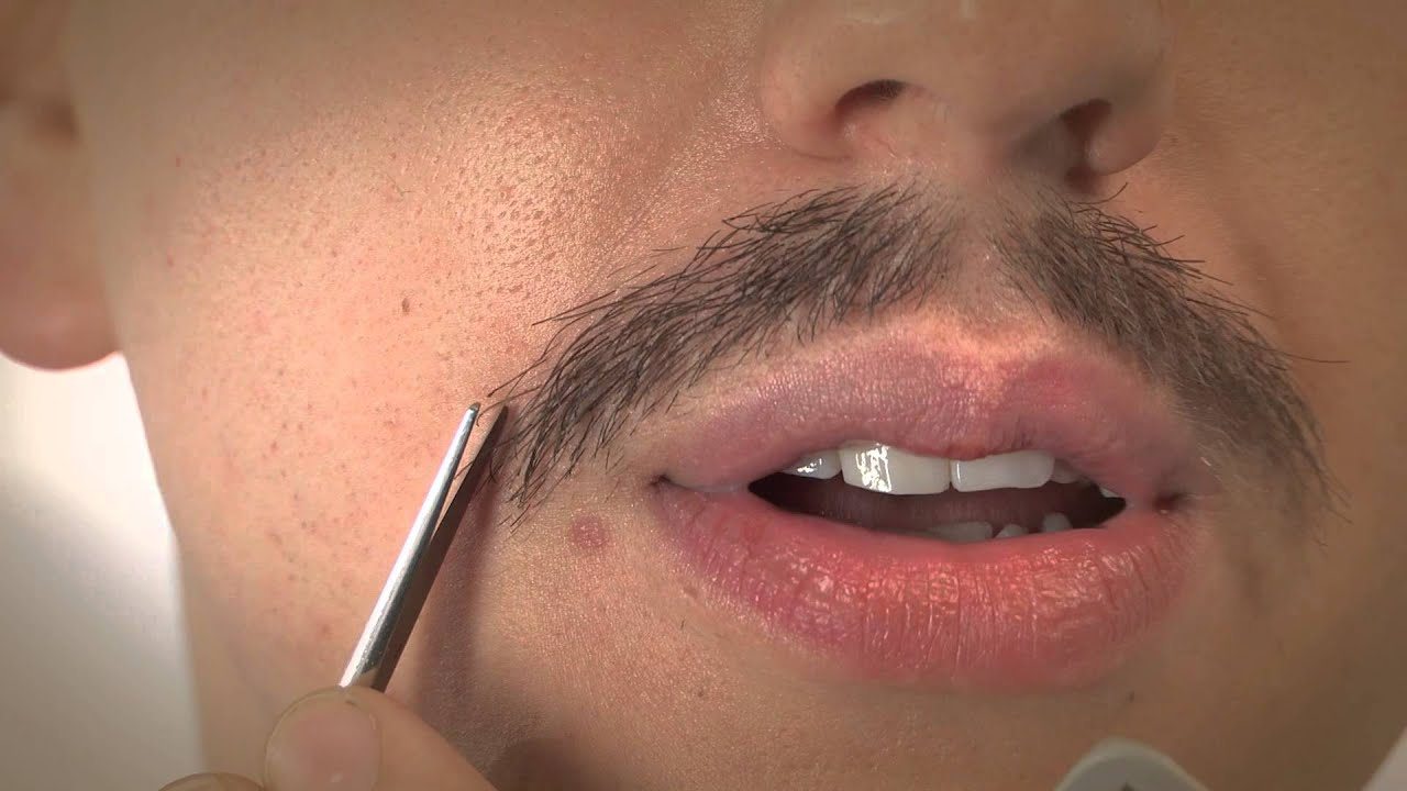 picture How to Groom a Moustache