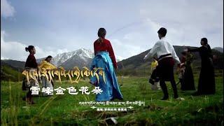 New Tibetan song གངས་བསྟོད་གསེར་གྱི་མེ་ཏོག ལེན་མཁན། བློ་བཟང་ཟླ་བ། ཆོས་མཚོ་སྐྱིད།