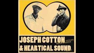 Heartical Dubplates Mix - Joseph Cotton & Friends