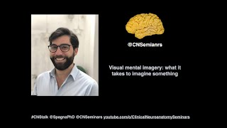 #CNStalk: Visual mental imagery: what it takes to imagine something - Alfredo Spagna