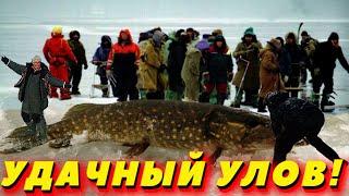 ★Оставь привычку ловить рыбу со спичкуПриколы на рыбалке 2021Трофейная рыбалкаСлучаи на рыбалке★