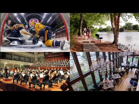 Nashville Area Chamber of Commerce   Economic Development Highlights 2017
