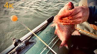 А рыбалка удалась Зимняя рыбалка с лодки на Дону