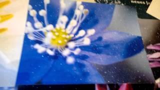 Открытки с эффектом инея(Новинка!!!! Открытки и приглашения с эффектом инея, проявляется только при вечернем освещении.Возможно изго..., 2014-12-17T10:05:58.000Z)