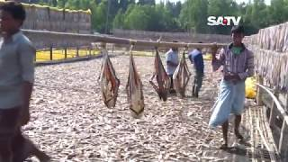 Shutki_চট্টগ্রামের শুটকি Docu 11