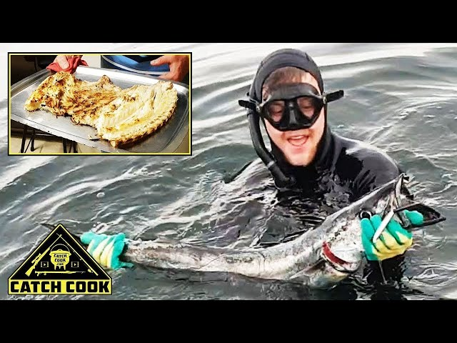 Spearfishing Snoek and Hottentot [Catch Cook] Britannia Bay / BBQ