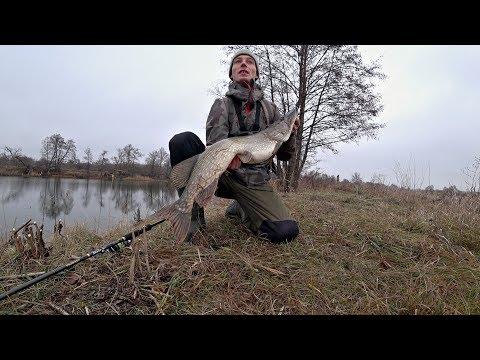 Не Ожидал Поймать Здесь Такую ЩУКУ!! Рыбалка на спиннинг.