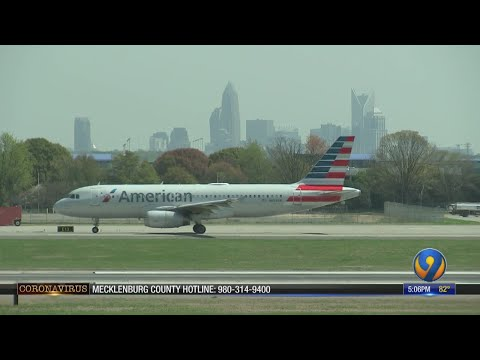 American Airlines Flight Attendant Dies Due To COVID-19, Officials Say