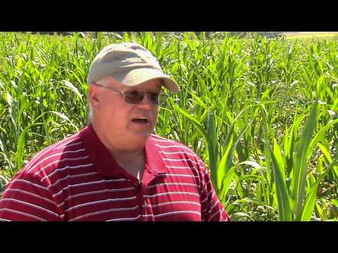 Gabe Brown - SARE National Conference on Cover Crops & Soil Health