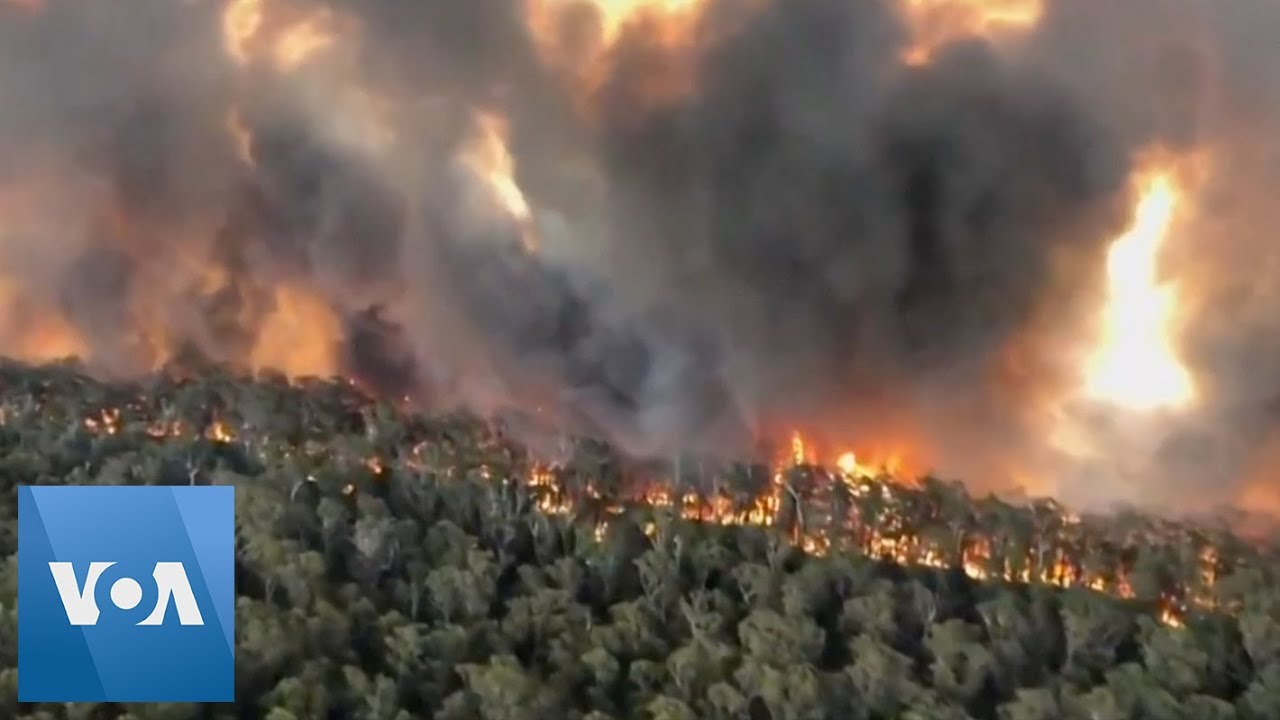 Aerial Footage Shows Scale of Fires in Australia