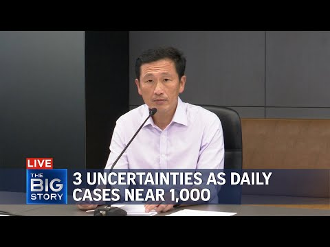 S'pore grappling with 3 uncertainties as new Covid-19 cases near 1,000: Ong Ye Kung   THE BIG STORY