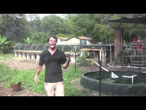 Kahumana Farms -