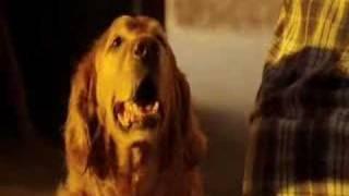 vuclip Smallville - Lana's Return[Season 7]
