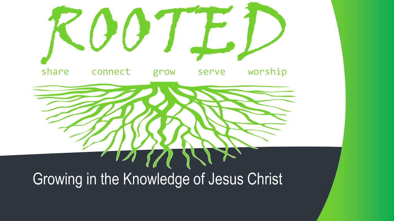 rooted 4 growing in the knowledge of jesus christ youtube