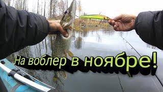 Ловля на Воблеры в ноябре Рыбалка осенью Ловля Щуки на спиннинг