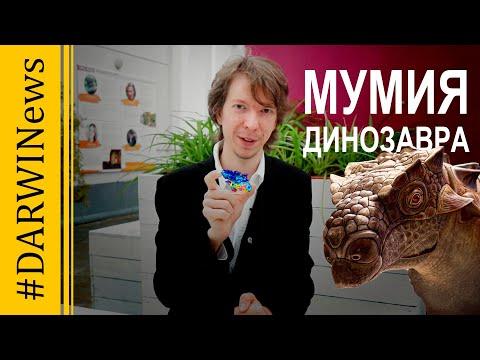 Исследованы мозг и внутренние органы динозавра. Ярослав Попов #DARWINews