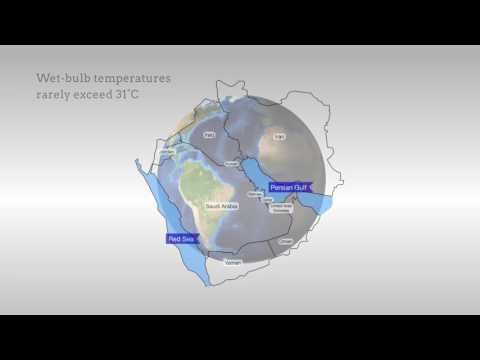 Future Temperature in Southwest Asia Projected to Exceed a Threshold for Human Adaptability