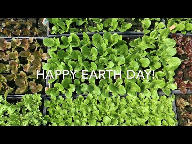 Earth Day at the Dartmouth Organic Farm