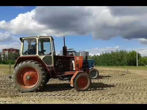 Купить трактор МТЗ, цена