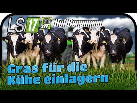 LS17 Hof Bergmann Reloaded - Gras für die Kühe einlagern #033 ★ Farming Simulator 17 Deutsch