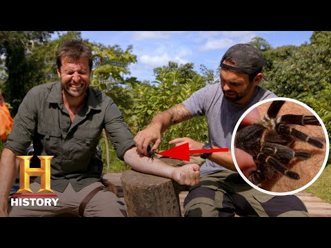BIT BY WORLD'S LARGEST TARANTULA! | Kings of Pain (Season 1) | History