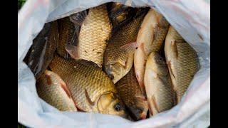 Рыбалка на карася Ачикуль 2019