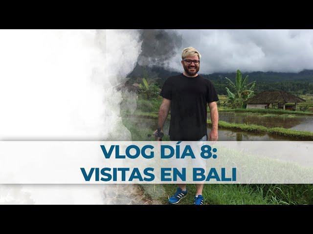 2 Little Divers Bali Vlog Día 8: Visitas en Bali