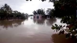 Afectan inundaciones a Tomatlán