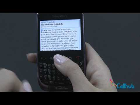 BlackBerry Curve 9300 Texting, Emailing and Web Browsing