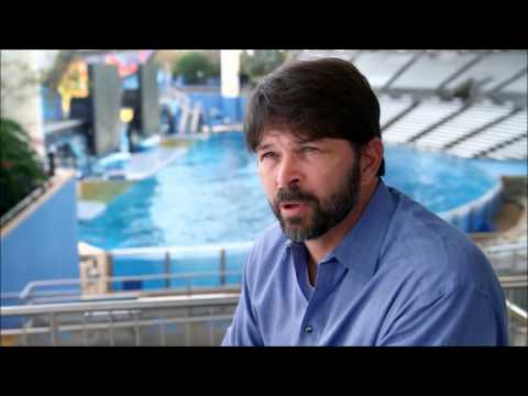 Why SeaWorld Cares
