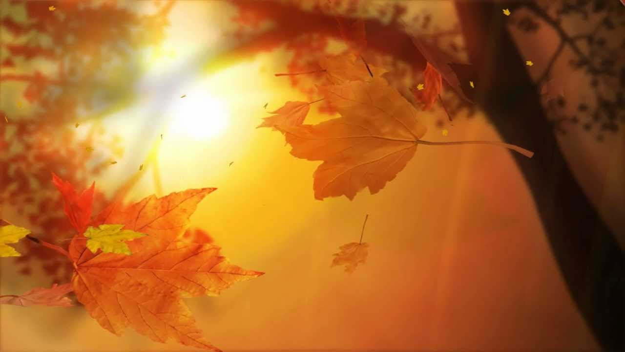 Falling Leaves Animated Wallpaper Leaf Fall Animated Wallpaper Http Www Desktopanimated