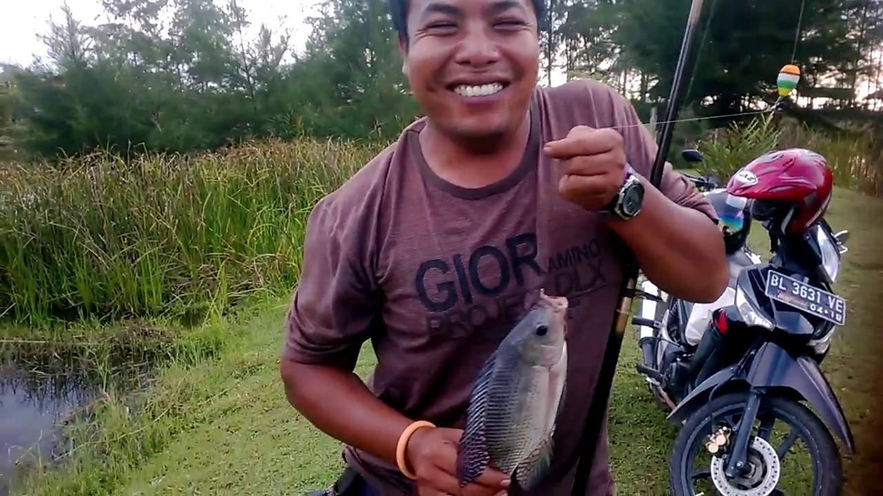 Mancing Di Rawa Dapat Ikan Nila Besar Youtube