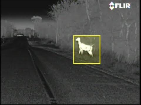 Flir Pathfindir Ii Nav Tv Pedestrian Detection In 2013
