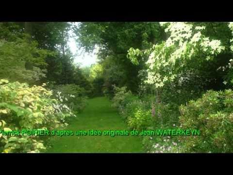 Jardin des lianes youtube for Jardin youtube