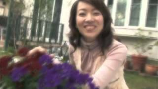 2015年2月に平和のシンボル・陽光桜をテーマにしたシングルCD「Stay~さ...