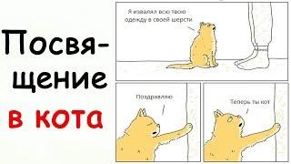 Лютые Приколы Посвящение в кота