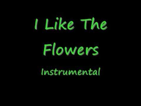 I Like The Flowers - Instrumental