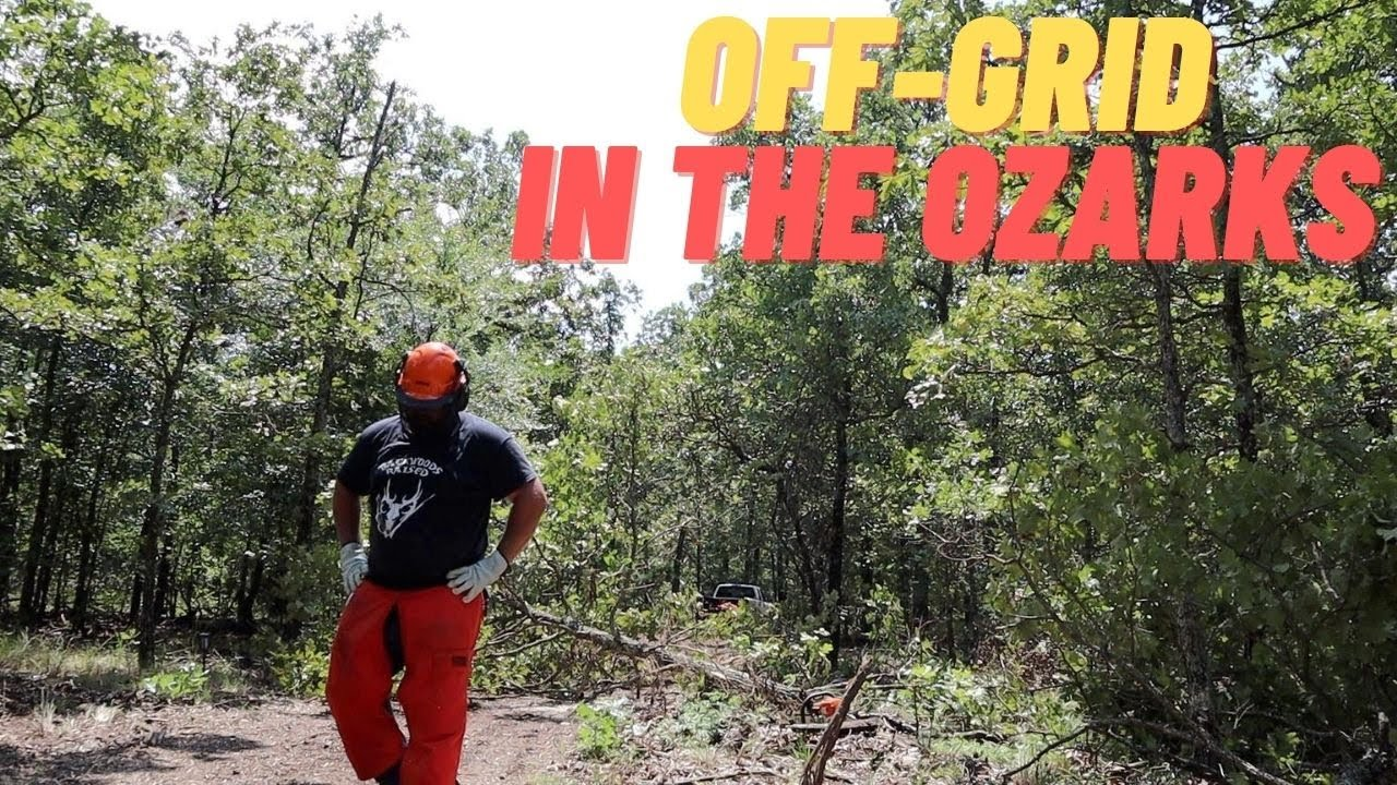 Off-Grid Cabin In The Woods Is Not HAPPENING Yet!