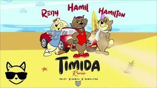 Timida (Remix) - Hamil Ft. Reijy x Hamilton (Audio Oficial)