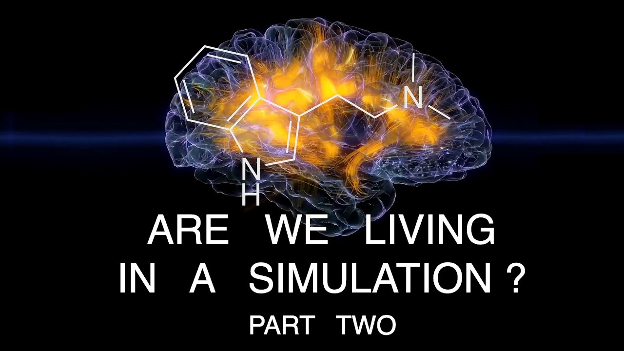 Are We Living In A Simulation? (Part 2)