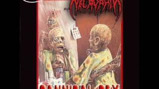 Necrophil - Cannibal