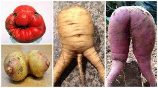 Простейший Способ Похудеть на Овощах