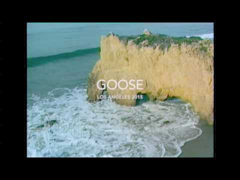 GOOSE - What You Need - Inside The Album