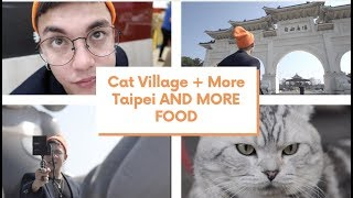 If you like CATS click this video!!! | Taipei Vlog (CKS + Cat Village)