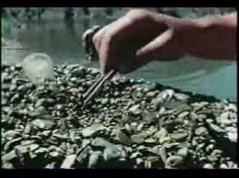 Mining Sapphires Near Helena, Montana - 1972