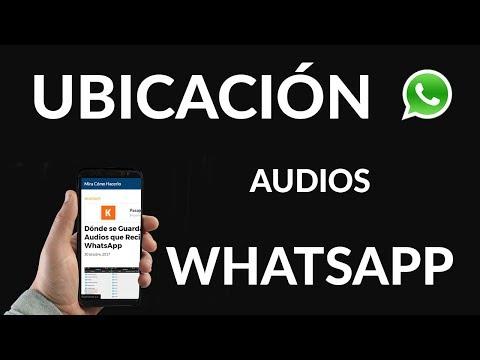 Dónde se Guardan los Audios que Recibo en WhatsApp