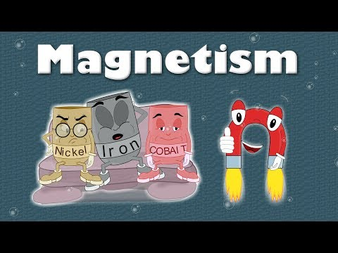 Magnetism for Kids | #aumsum