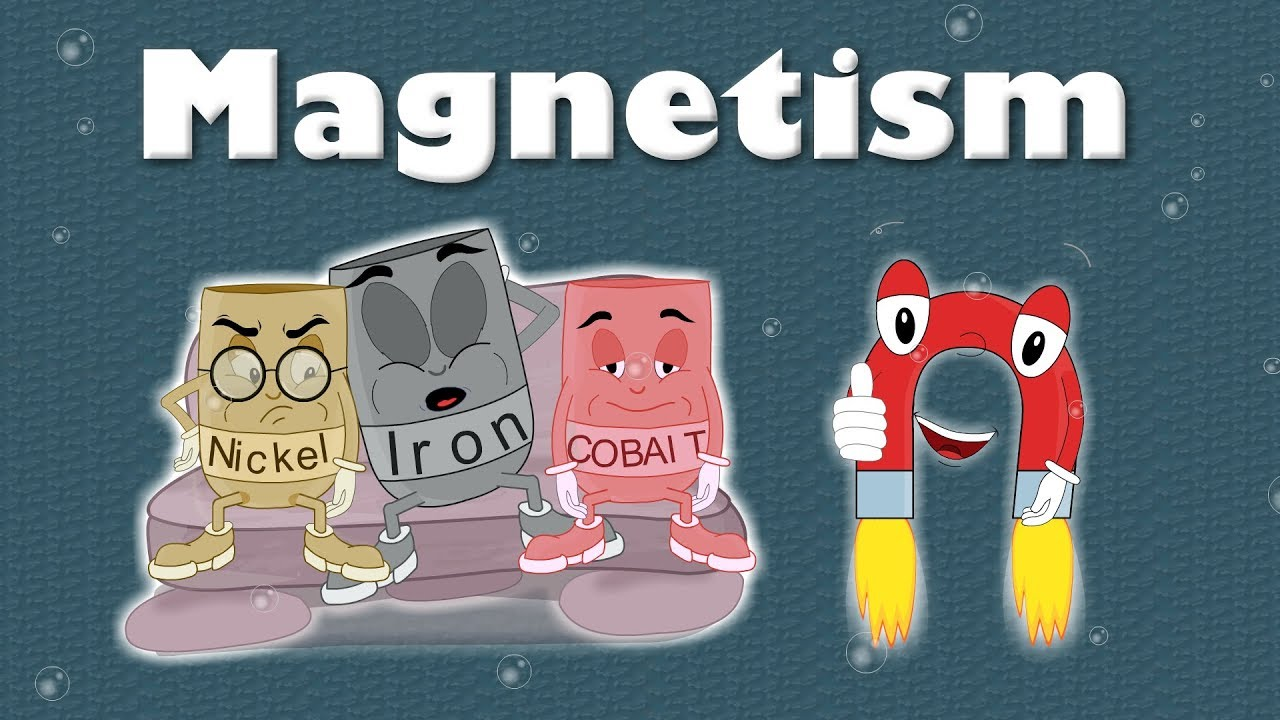 small resolution of Magnets   TheSchoolRun