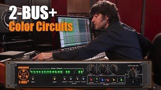 2-BUS+ Color Circuits - Dangerous Music