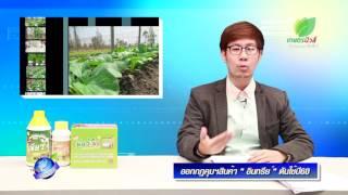 รอบรู้ข่าวเกษตร9 สินค้าเกษตรอินทรีย์